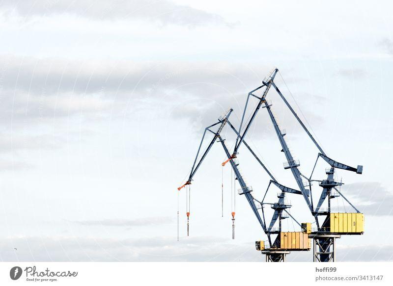 Kräne im Hafen zur Verladung Hafenkran Kran Ausleger Verladekran Kaianlage Industrieanlage Beladung Industriehafen Verladestation Pier Bagger Maschine Logistik