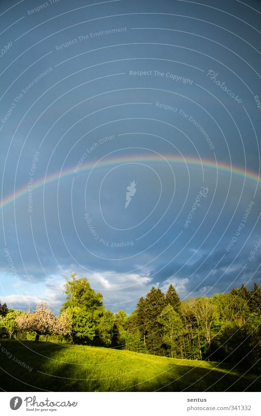 Regenbogen Natur Landschaft Freude Umwelt Frühling Stimmung außergewöhnlich Zufriedenheit Schönes Wetter Fröhlichkeit Lebensfreude Frühlingsgefühle