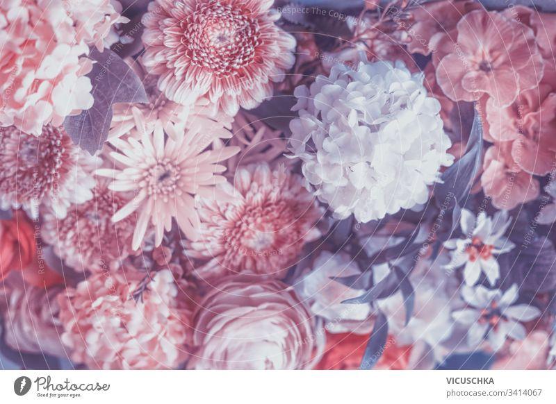 Pastellrosa und violette Blumen blühen im Hintergrund purpur Überstrahlung Farbe Blütenblatt Garten Design Muster lebhaft Haufen Eingang Ankündigung Kunst