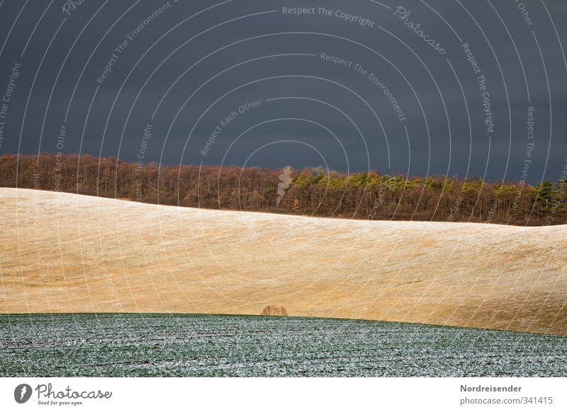 Es wird Schnee geben.... Himmel Natur Pflanze Farbe Einsamkeit Landschaft Wald Herbst Linie Stimmung außergewöhnlich Feld Klima Urelemente bedrohlich