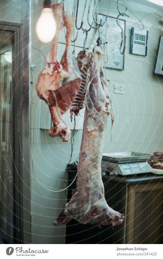 abhängen Tier Tod Gefühle bedrohlich Vergänglichkeit Todesangst Wut gruselig Schmerz Surrealismus Fleisch Aggression Frustration Entsetzen hässlich Hass