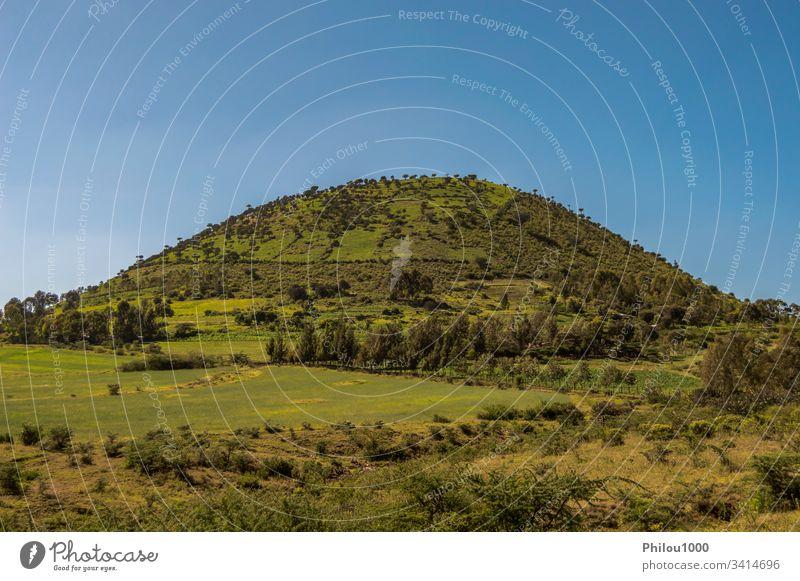 Bewaldeter Hügel in der Form Afrika Kenia blau blauer Himmel Aufstieg Cloud Depression fallen Wald Gras grün Wanderung Reise Landschaft lieblich Ahorn