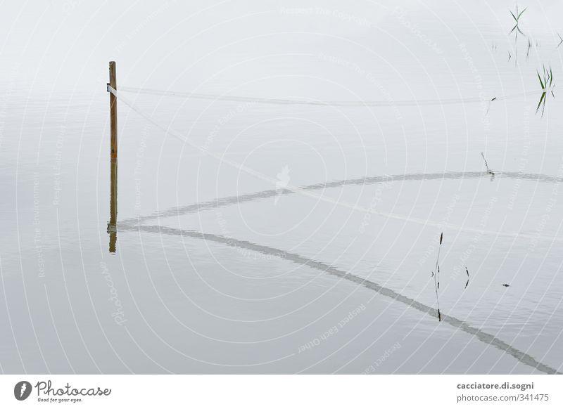 pasture area Landschaft Wasser Klimawandel schlechtes Wetter Wiese Weide Zaun Holzpfahl Pfosten Linie einfach kalt nass trist grau Traurigkeit Einsamkeit