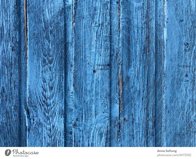 Himmelblaue Holzstruktur — Tür himmelblau hell-blau Detailaufnahme Menschenleer Strukturen & Formen Anstrich Außenaufnahme Bildausschnitt Linie Holzwand
