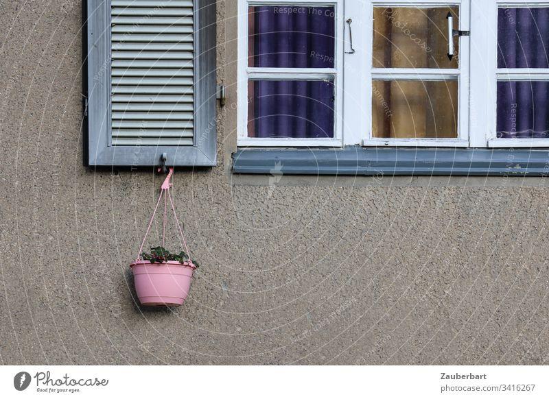 Sprossenfenster, weißer Rahmen, Fensterladen und rosa Blumenkorb vor grauer Fassade Fensterrahmen weiss Korb hängen Haus Idylle Häusliches Leben Außenaufnahme