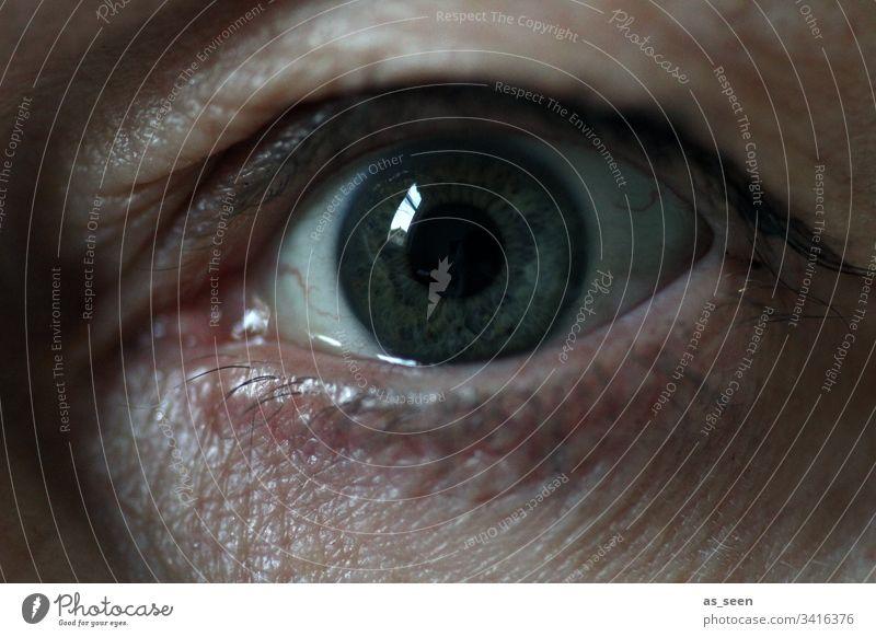 Auge mit Angst im Blick Iris Mensch Wimpern Pupille Regenbogenhaut Detailaufnahme Gesicht Nahaufnahme Frau Makroaufnahme Ader dunkel Falten Reflexion Spiegelung