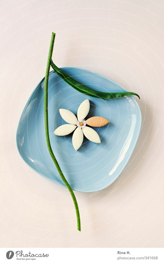CalissonBlümchen II Süßwaren Geschirr Teller Blume Blüte Stengel Gänseblümchen hell kaputt lecker blau grün Schmerz Trennung kopflos geschnitten Menschenleer