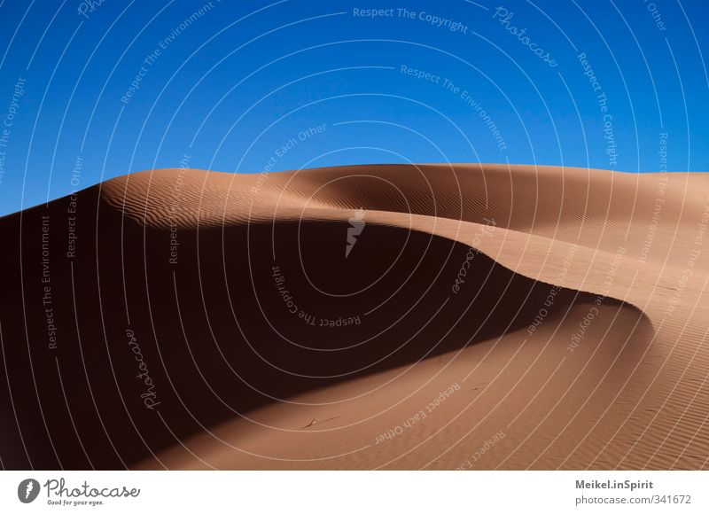 Sahara Natur Landschaft Wolkenloser Himmel Schönes Wetter Wärme Dürre Wüste Stranddüne Sand heiß trocken Einsamkeit Ferien & Urlaub & Reisen karg Schattenspiel