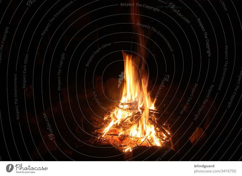 Lebensnotwendig | Wärme und Licht. Feuer. Party Grill Stock Äste Flamme Hitze Gefahr brennen heiß Brand Glut gelb Nacht schwarz rot Feuerstelle Farbfoto orange