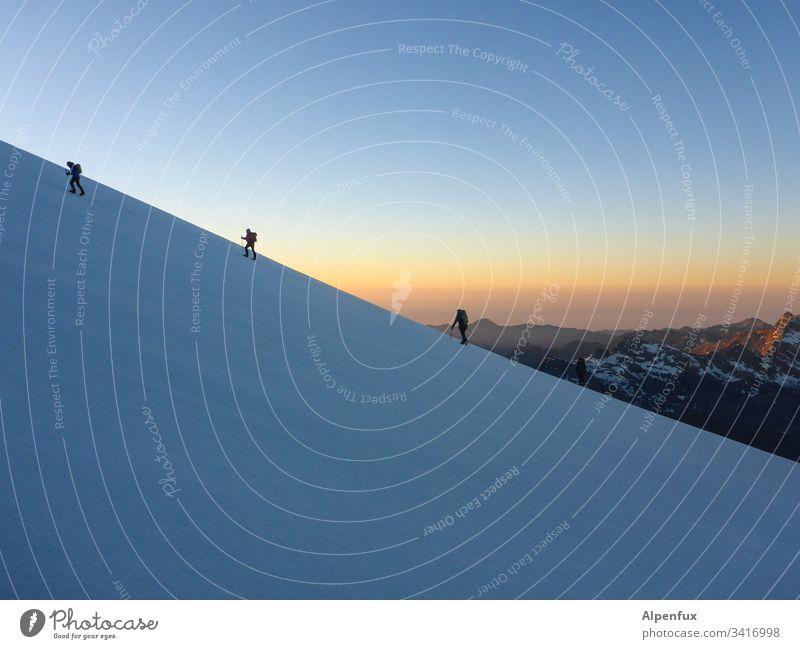 Seilschaft | gerade schräg Gletscher Morgen Sonnenaufgang Berge u. Gebirge Schweiz Bergsteigen Bergsteiger Abenteuer Erfolg Schnee Tatkraft Außenaufnahme Alpen