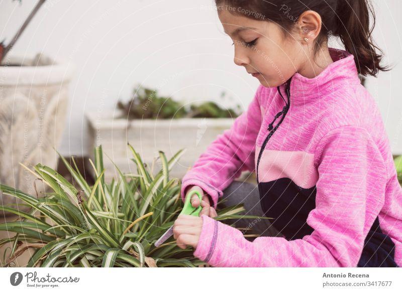 Mädchen, das die Töpfe in ihrem Hausgarten beschneidet 6-7 Jahre Säugling Beschneidung allein eine Person Gärtner heimwärts Gartenarbeit Pflanzen patio Frühling