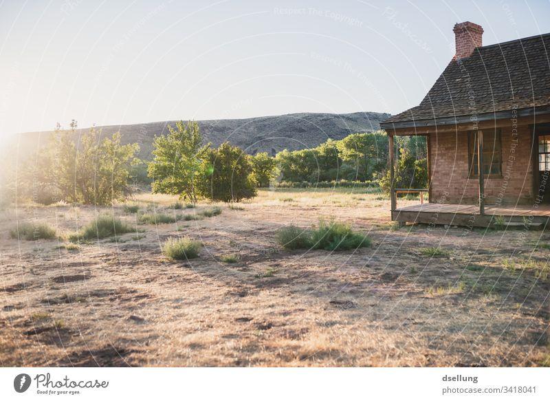 Backsteinhaus mit Baum im Garten im abendlichen Gegenlicht Innenaufnahme ruhig Einfachheit Geisterstadt braun alt Einsamkeit Starke Tiefenschärfe Sonne Spuren