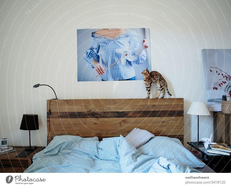 Schlafzimmer Bett Bettwäsche Katze bengal Katze Bild Lampenschirm blau grau Wohnung zuhause Ruhe Nachttisch
