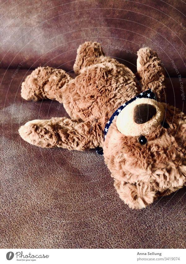 Brauner Teddybär vergessen auf der Couch Spielzeug Spielen Kindheit Kindheitserinnerung Menschenleer mehrfarbig zurückgelassen Einsamkeit Vergangenheit