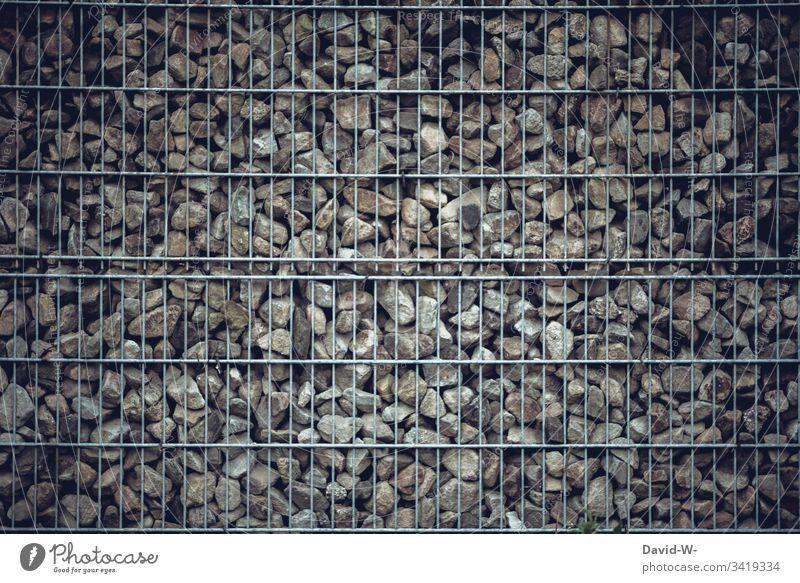 Steinwüste Zaun Steine Garten Umrandung Umwelt Umweltsünder trend umrandung nachhaltig Mauer Tod unfreundlich Natur künstlich modern schlecht insektensterben