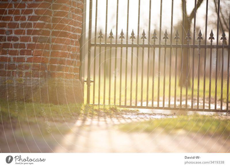 Sonnenlicht scheint durchs Tor im Park Frühling verschlossen abgesperrt verriegelt draußen Menschenleer Schönes Wetter Außenaufnahme Farbfoto Licht Sommer