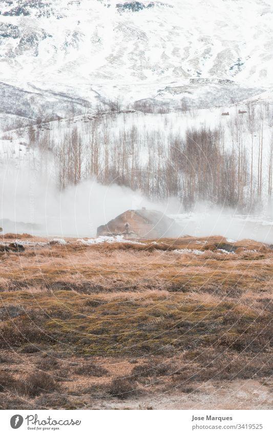 Landschaft eines schneebedeckten Berges mit Nebel und Geysir Berge u. Gebirge Winter Schnee Haus heimwärts Island kalt Hintergrund reisen Tourismus traditionell