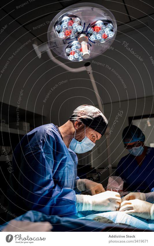 Tierärztliches Personal während einer Operation in einer modernen Klinik Chirurg Veterinär Chirurgie Krankenhaus Sanitäter Arzt Behandlung Krankenpfleger Arbeit