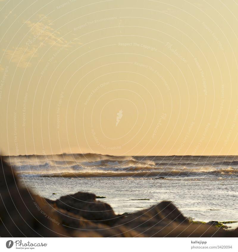 sidi kaouki Strand Küste Marokko Sidi Kaouki Urlaubsstimmung sonnenuntergang Atlantik Wellen Horizont Fischerdorf Felsen Riff Sturm stürmisch wellenberge