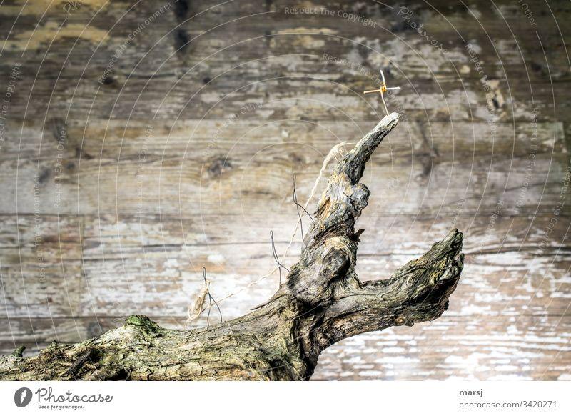 Seilschaft | Drei Gipfelstürmer sind durch ein Seil miteinander verbunden und geben sich gegenseitig Schutz. Sie hoffen, dass sie alle drei das Ziel erreichen und vor allem oben alle Platz haben! | Drahtfiguren