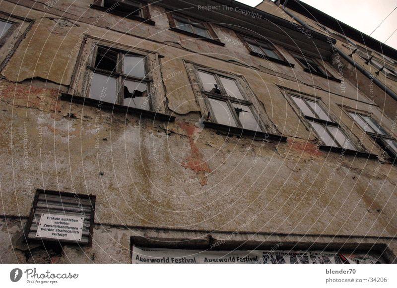 Plakate ankleben verboten Ruine verfallen vergessen Osten Erfurt Weitwinkel verrotten Vergänglichkeit braun Architektur DDR unsaniert morbide
