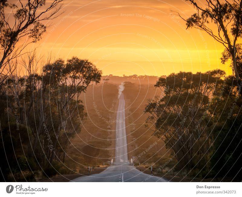 Good Morning Australia Australien Sonnenaufgang Straße Ferne West Australien Roadtrip