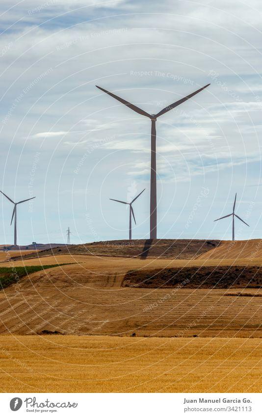 Windpark Park Landschaft Energie Elektrizität natürlich Natur grün Bauernhof Pflanze alternativ außerhalb Erzeuger Entwicklung heiß trocknen modern kinetisch