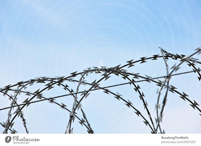 Stacheldraht-Sicherheit rollt Schutz über den blauen Himmel mit Stacheln versehen Draht Tag Nahaufnahme Brötchen stechend Kopie Raum tiefstehend Winkel Seite