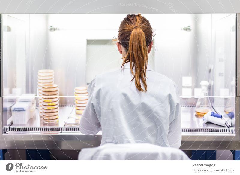 Wissenschaftlerin, die in einer Forschungseinrichtung für die Entwicklung von Koronaviren-Impfstoffen arbeitet. Labor forschen Biotechnologie Corona-Virus
