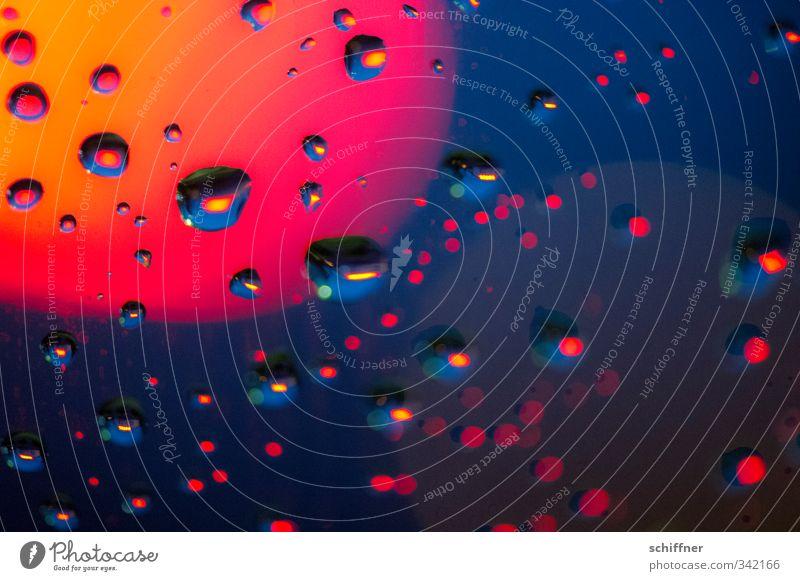 Feuchtgebiete Kunst nass feucht Wassertropfen rot Ampel Rotlicht rotglühend Rotlichtviertel blau Orange mehrfarbig Reflexion & Spiegelung Dämmerung
