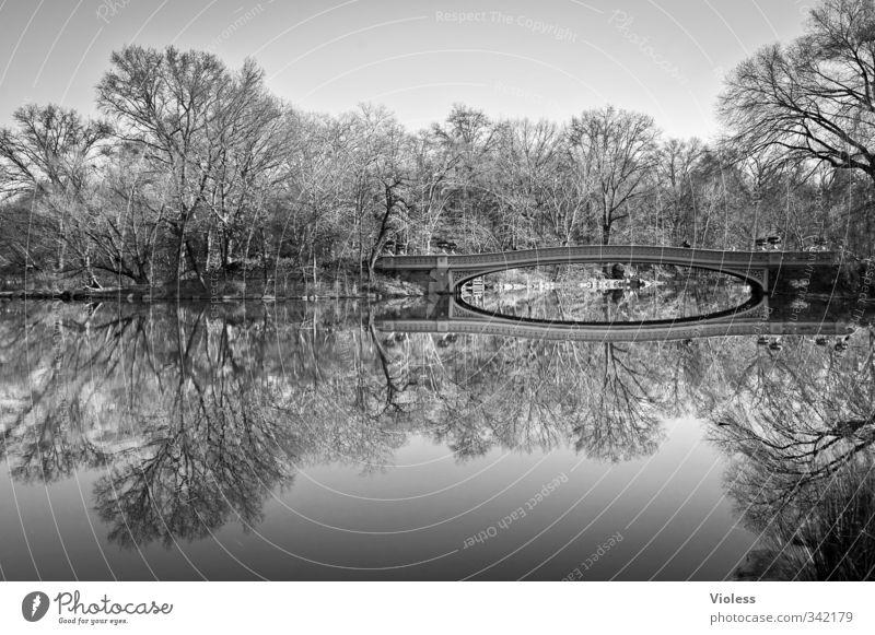 ...double Hauptstadt Park Brücke Sehenswürdigkeit Central Park Erholung Bekanntheit Romantik schön ruhig New York State Reflexion & Spiegelung Schwarzweißfoto