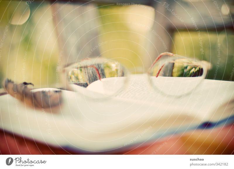lesebrille Bildung Herbst hell ruhig Interesse lesen Wissen Buch Papier Brille Seite Farbfoto Außenaufnahme Textfreiraum Mitte Tag Unschärfe