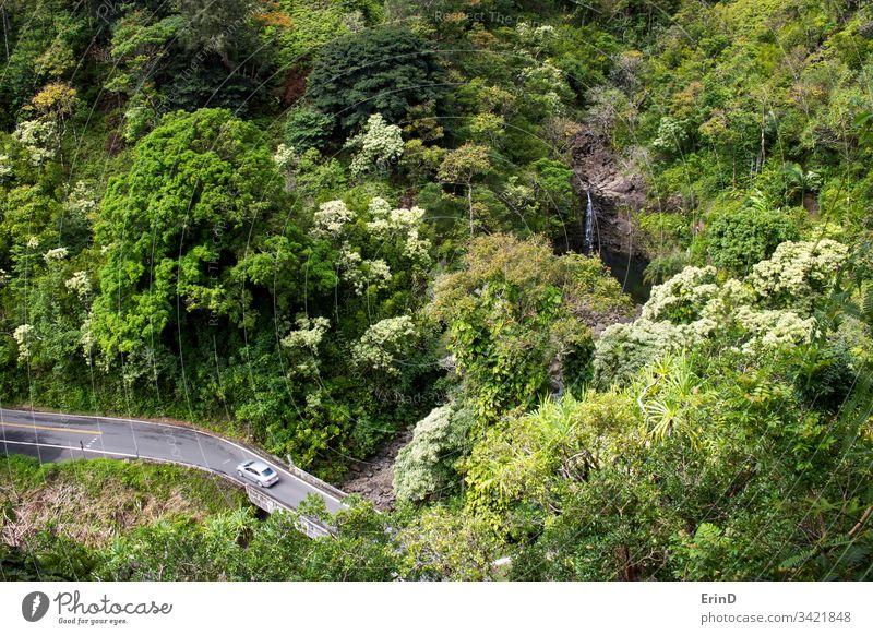 Auto fährt auf einer einspurigen Straße im Dschungel mit Wasserfall reisen Autobahn Laufwerk fahren Hana Maui Hawaii Tourismus Abenteuer entdecken Urlaub