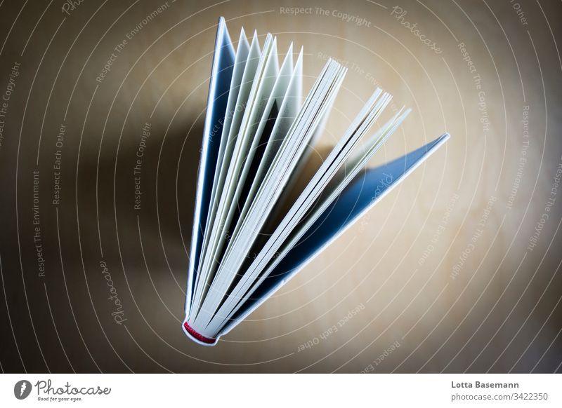 Buch Dinge Literatur Bildung Lesestoff Innenaufnahme Buchseite Farbfoto Wissen lesen Menschenleer graphisch Papier Vogelperspektive Seiten Buchseiten Weisheit