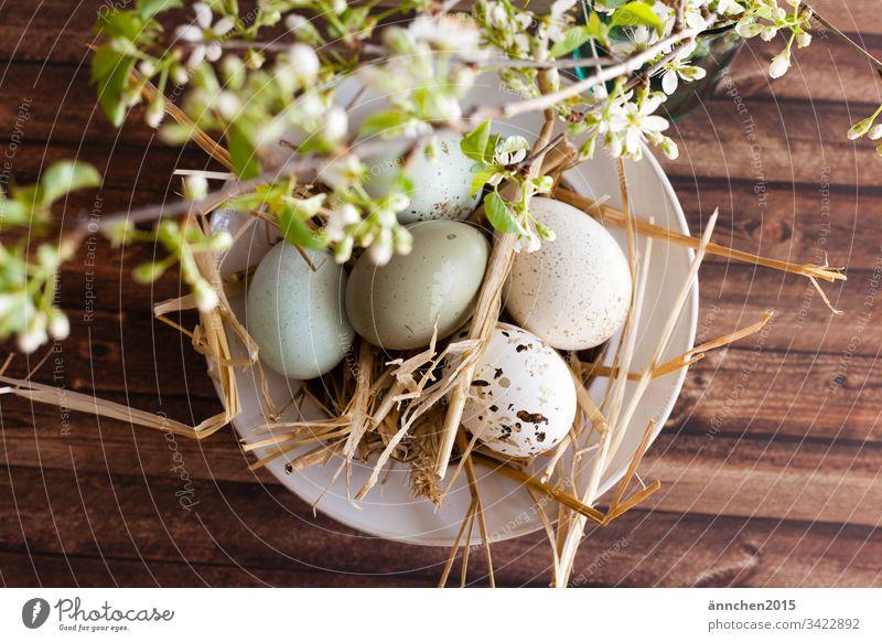 Bald ist Ostern Ei Eier Ernährung Lebensmittel mehrfarbig Innenaufnahme Osterei Menschenleer Tradition Frühling weiß braun Stroh Schale Blüten Blume grün Holz
