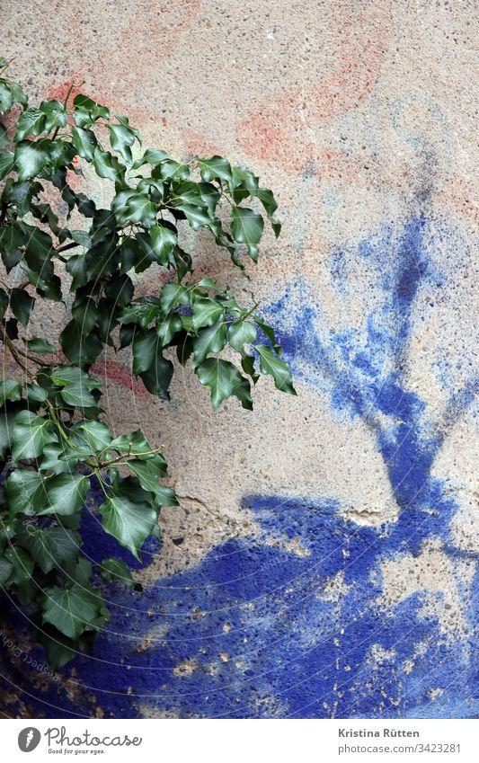 pflanze an wand mit sprühfarbe mauer blätter grün blau struktur textur hintergrund material oberfläche detail textfreiraum beschaffenheit hauswand fassade