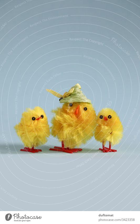 Ostern, Familie von Deko Küken und Huhn Hühner Osterei Osterhase Osternest Nest Tradition Frühling cool bunt Strohhut Osterfest Dekoration & Verzierung