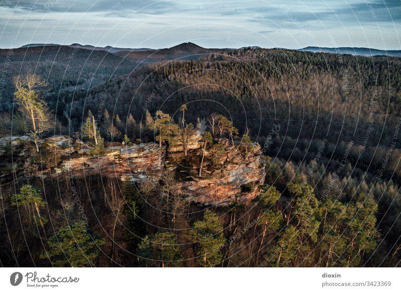 Felsformation aus Buntsandstein inmitten eines bewaldeten Mittelgebirges Felsen Stein Berge u. Gebirge Landschaft Natur Außenaufnahme Felswand Pfälzerwald