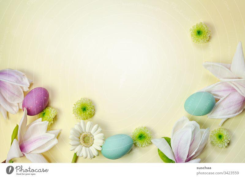 ostereier und frühlingsdekoration auf gelbem hintergrund Ostern Ostereier gekochte Eier bunte Eier Blumen Blüte Astern asternähnliche Blume Blütenblätter