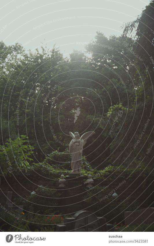 engelstatue auf einem friedhof Engel Statue Natur Bäume Park Friedhof Gräber Grabstätte Tod Wiedergeburt Trauer Ruhe Einsamkeit friedvoll Religion & Glaube