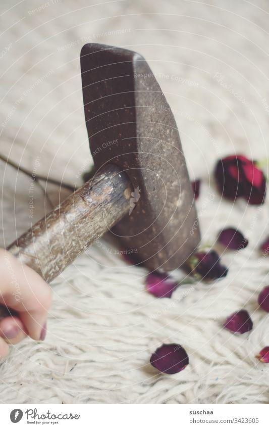 hammer zerstört eine rose Fotochallenge Hammer wohnen Rosen Rosenblütenblätter Brille Gewalt Zerstörung Romantik Eiffersucht Kommunismus Russland Vergangenheit