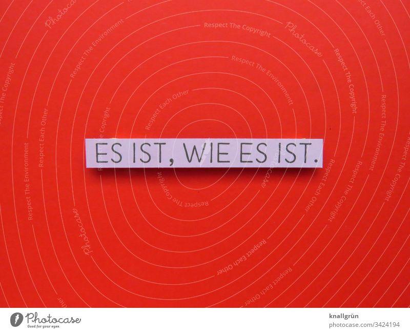 Es ist, wie es ist. Kommunizieren Sprache Wort Buchstaben Typographie Lateinisches Alphabet Kommunikation Schriftzeichen Großbuchstabe Text Letter pragmatisch