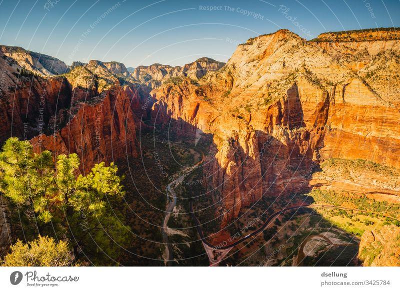 Aussicht in den Zion Canyon im Sonnenuntergang Abend Westen Urelemente Ausflug wandern Freiheit Fernweh Erde Stein Kontrast Sommer Berge u. Gebirge Sonnenlicht