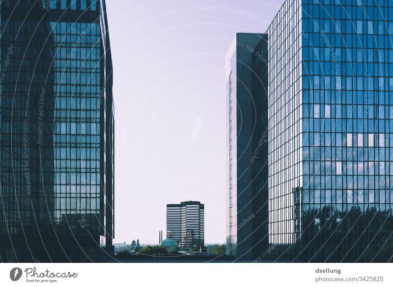 Spiegelnde Hochhäuser bei wolkenlosem Himmel Tag Außenaufnahme Stadtbild urban Glas Lichtschein Fenster Wand gefiltert Turm Grundbesitz Hotel Business District