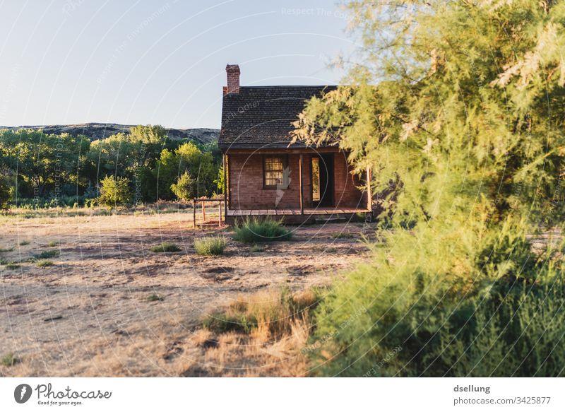 Backsteinhaus mit grünen Sträuchern im Abendlicht ruhig Einfachheit Geisterstadt Sonne Starke Tiefenschärfe Einsamkeit alt braun Gegenlicht Spuren Sonnenstern