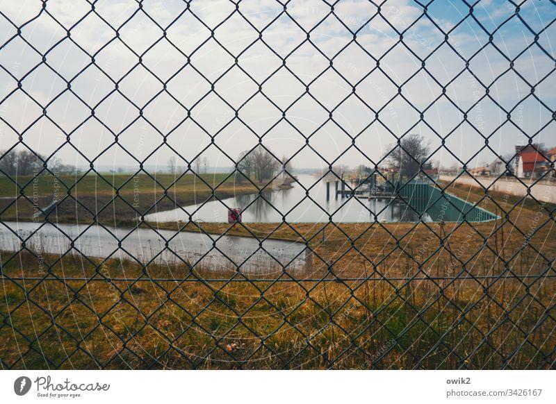 Mühlberg, Hafen Maschendraht Zaun Becken Wasser Gras Absperrung Gelände Bäume schwache Tiefenschärfe Maschendrahtzaun Außenaufnahme Menschenleer