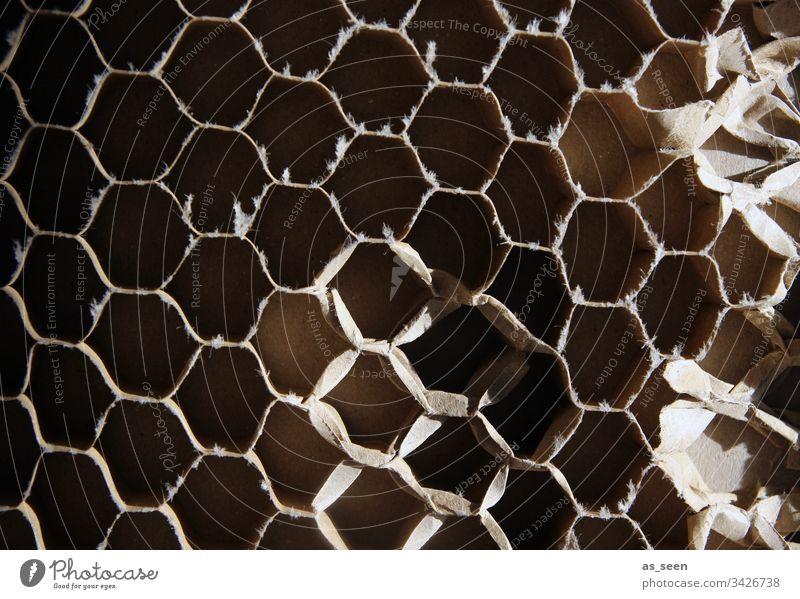 Wabenmuster aus Pappe Wellpappe Papier Verpackungsmaterial zerdrückt Muster Struktur Strukturen und Formen kaputt Farbfoto Menschenleer Strukturen & Formen