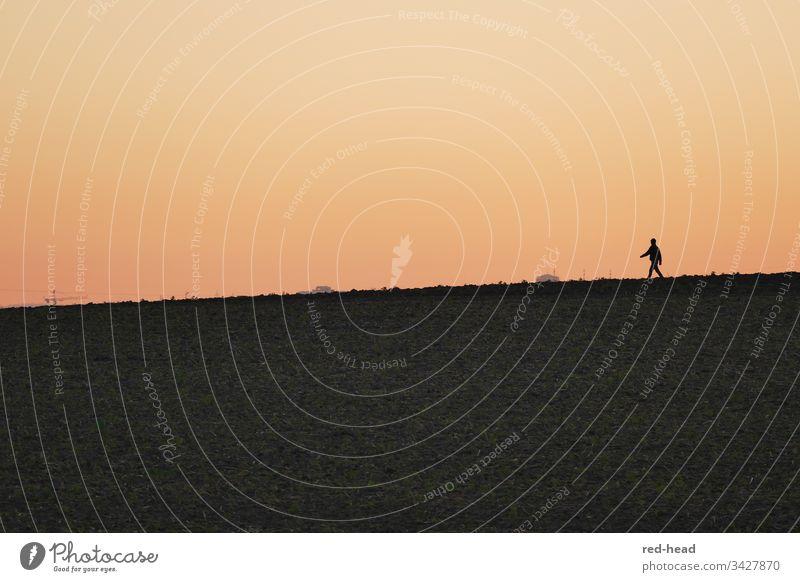 eine Person am Horizont, Spaziergang vor Abendrot ohne Wolken Sonnenuntergang orange ruhig friedlich Himmel Landschaft Außenaufnahme Dämmerung Natur Farbfoto