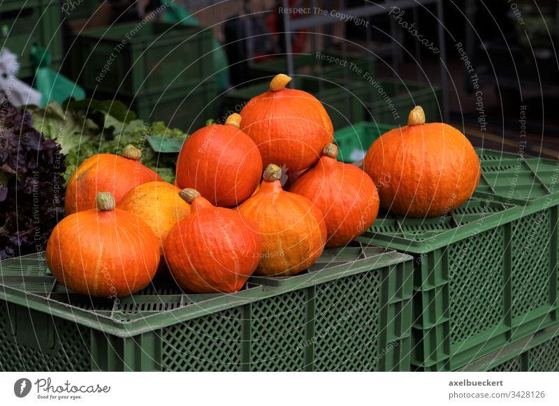 Hokkaido Kürbisse auf dem Wochenmarkt Hokkaido-Kürbis Hokkaidokürbis Markt Lebensmittel Gemüse Vegetarische Ernährung Menschenleer Gesunde Ernährung Bioprodukte