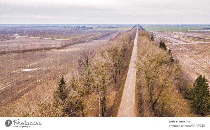 Gerade Straße in einer Allee von trockenen Bäumen ohne Blätter im Winter / Anfang Frühling Luftaufnahme Weg gerade Bauernhof ländlich Garten Bereiche Antenne